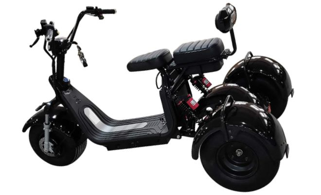 Scooter Grizzly Grizzly
